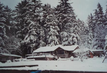The house at Funter Bay on a snowy day. Normally winter was just wet, and snow didn't tend to last very long.