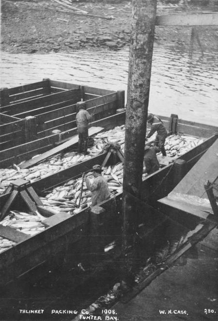 Funter Bay Cannery2 1908