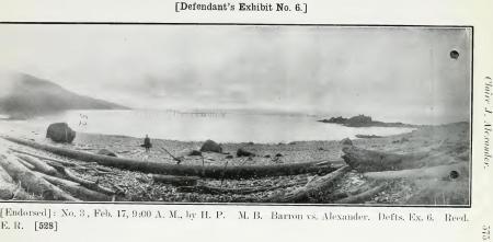 Lizard Head 1911 2