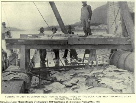 Rails on unidentified cannery wharf (below fish trough). From Jones, Lester